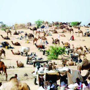 Rajasthan Darshan (Marwad)
