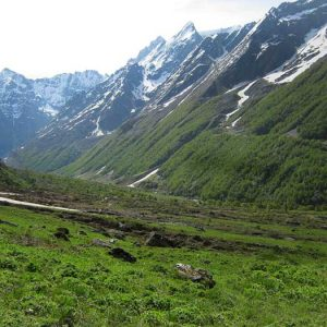Trek To Valley Of Flowers, Uttarakhand