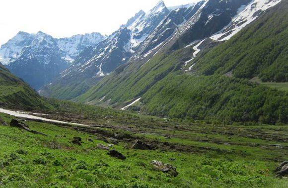 Trek To Valley Of Flowers, Uttarakhand